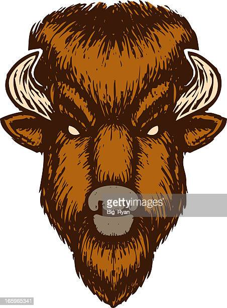 buffalo head - european bison stock illustrations, clip art, cartoons, & icons