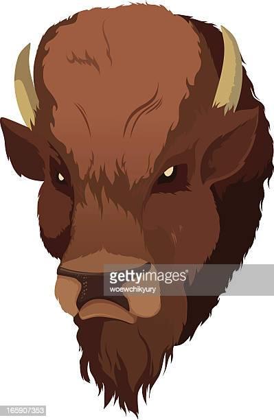 buffalo - european bison stock illustrations, clip art, cartoons, & icons