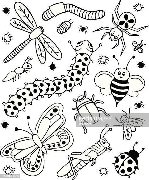 Bug Doodles