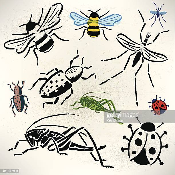 bugs - grasshopper, beetle, lady bug, bumble bee, mosquito - bumblebee stock illustrations, clip art, cartoons, & icons