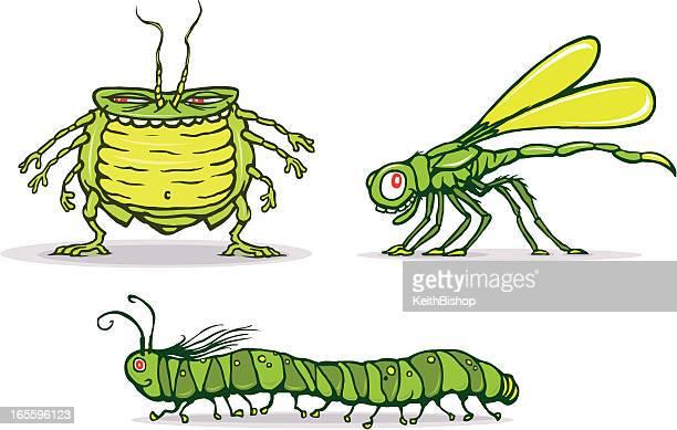 ilustrações de stock, clip art, desenhos animados e ícones de erros ou insectos-desenhos animados - centopeia
