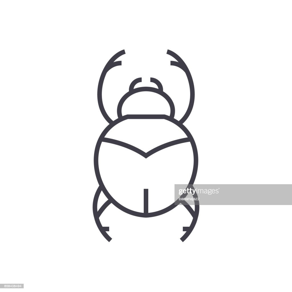 bugs,egypt sign vector line icon, sign, illustration on background, editable strokes