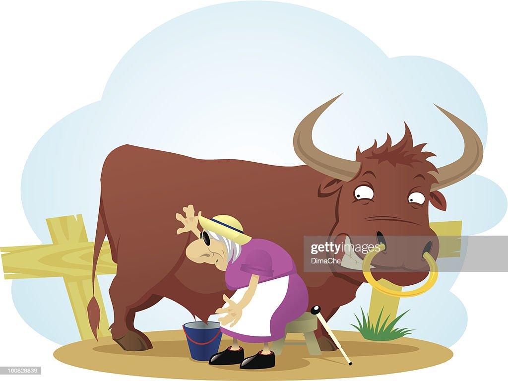 Bull and blind dairymaid : Vector Art