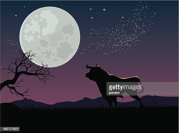 bull and moon
