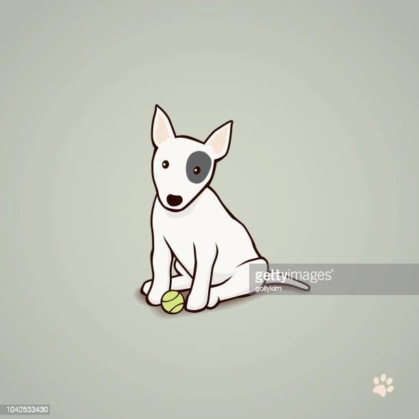 Cachorro de Bull Terrier con pelota de tenis