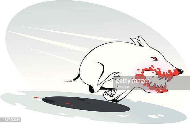 bull terrier - private property stock illustrations