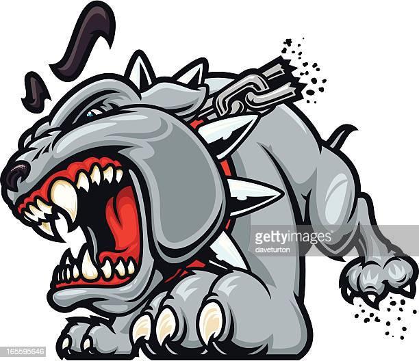 Bulldog Crazed