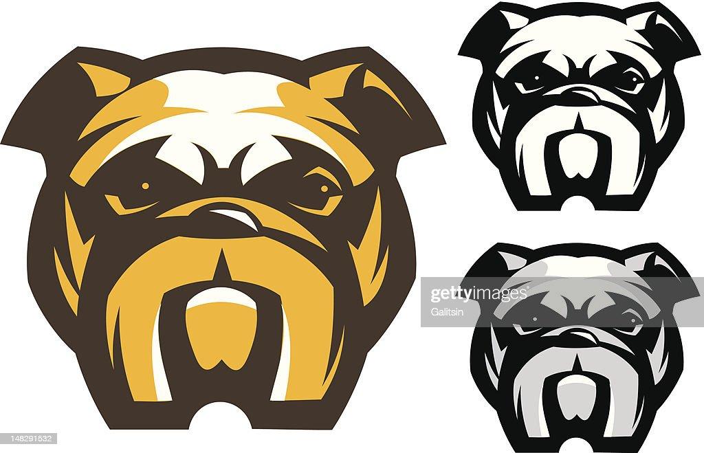 Bulldog dog's head