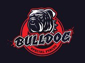 Bulldog head design, emblem on dark background. Tee print design. Vector illustration.