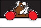 Bulldog Mascot - Boxer