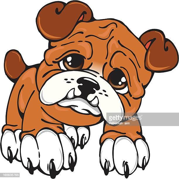 ilustraciones, imágenes clip art, dibujos animados e iconos de stock de bulldog cachorro - pit bull terrier