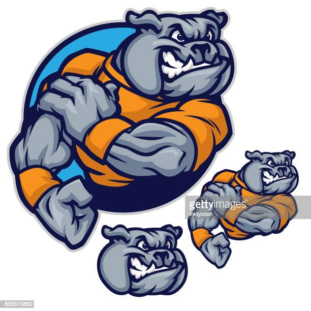 bulldog sports pack - fighting stance stock illustrations, clip art, cartoons, & icons