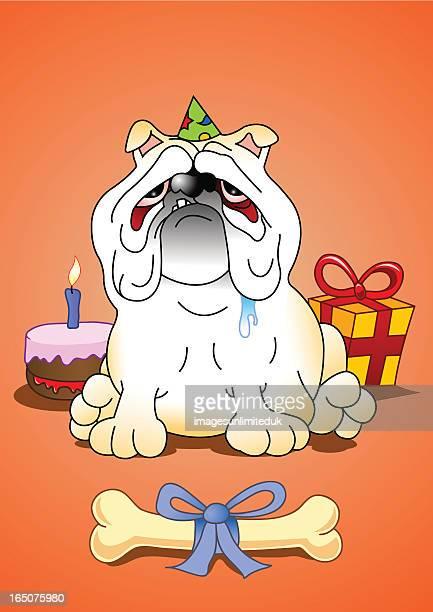 bulldogs birthday - animal saliva stock illustrations, clip art, cartoons, & icons