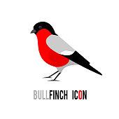 Bullfinch (Pyrrhula pyrrhula, Eurasian Bullfinch) bird icon isolated on white background