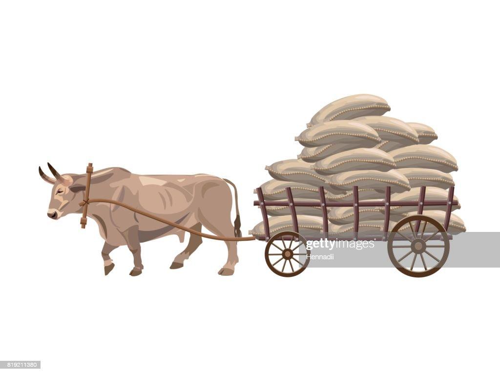 Bullock cart vector