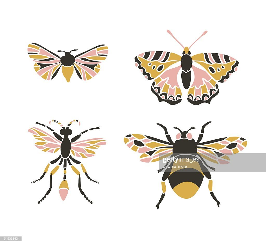 Bumblebee, butterfly, mol, apanteles. Insect icons.