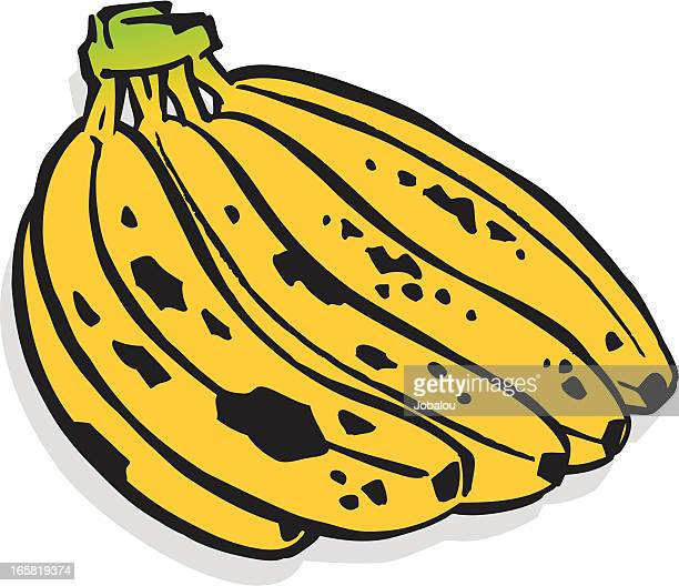 束が付いたバナナの木