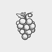 Bunch of grapes sketch hand drawn doodle icon