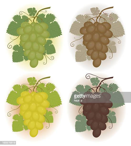 Bunches de uvas