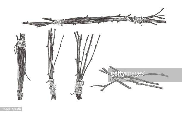 bundles of twigs wrapped with raffia - stick plant part stock illustrations