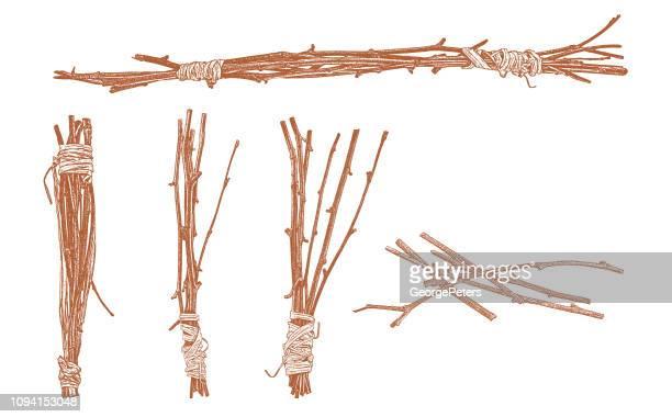 Bündel von Zweigen mit Bast umwickelt