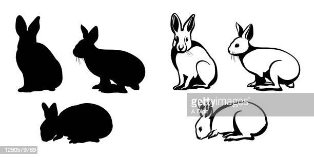 bunnyonetwothree - easter bunny stock illustrations