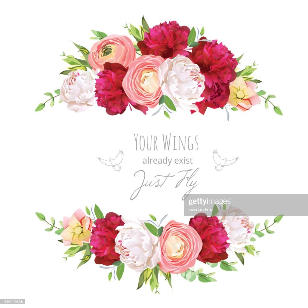 Burgundy red and white peonies, pink ranunculus, rose vector des