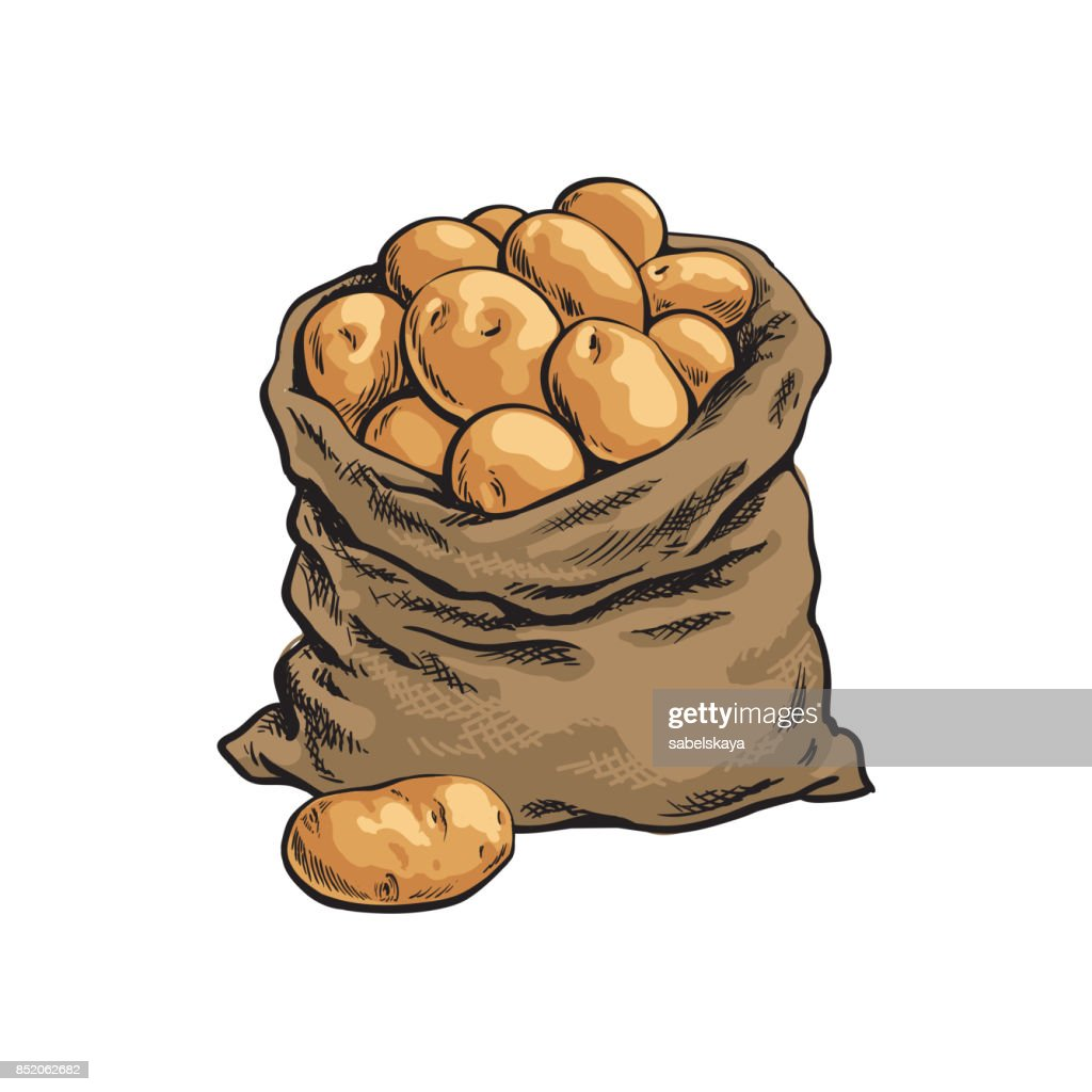 Burlap sack full of ripe potato, hand drawn