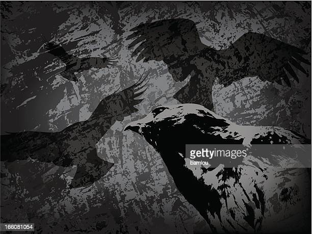 Buse on grunge texture background with multiple bird shadows