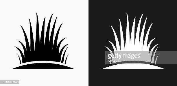Bush Icon on Black and White Vector Backgrounds