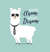 Business Llama with no drama cute card with handrawn alpaca. Greeting card for Boss's day or motivational poster with lettering. Vector illustration.