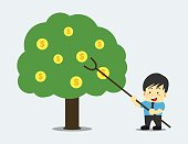 Business man harvesting the coins on the tree, financial concept