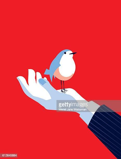 Business-Mann mit einem Vogel in seiner Hand