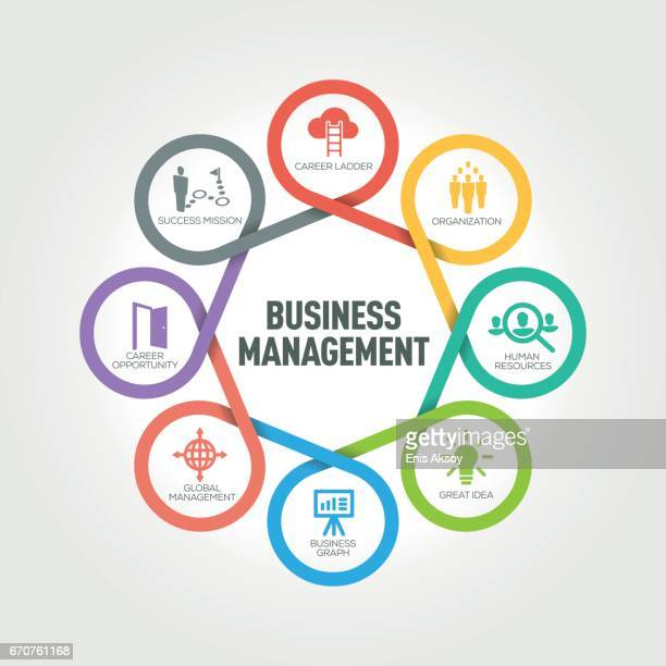 Business Management infographic with 8 steps, parts, options