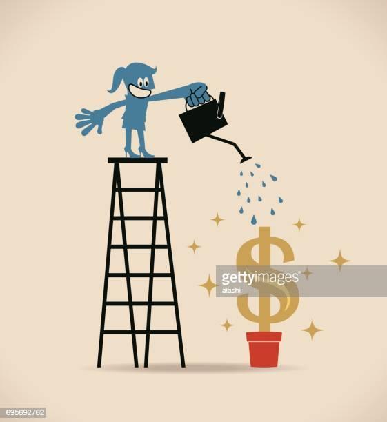businesswoman on top of ladder, watering money (dollar) plant - money tree stock illustrations, clip art, cartoons, & icons