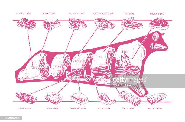 butcher chart of a cow - sirloin steak stock illustrations, clip art, cartoons, & icons