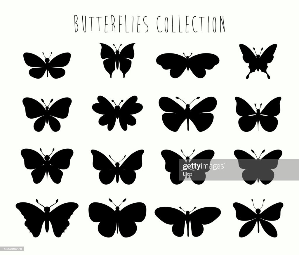 Butterflies collection  with different black shapes