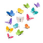 Butterflies in flight