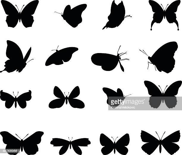 butterflies silhouette - insect stock illustrations
