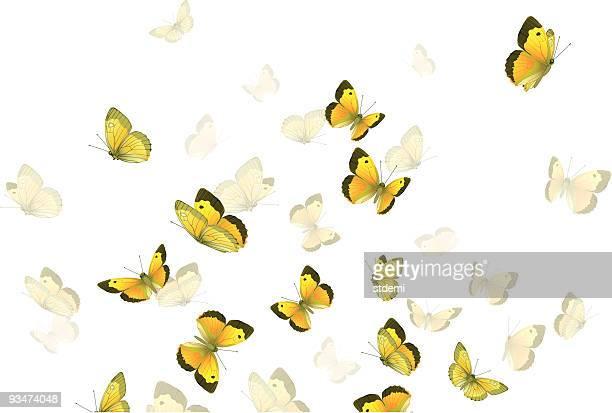 illustrations, cliparts, dessins animés et icônes de des papillons - voler