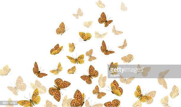 ilustraciones, imágenes clip art, dibujos animados e iconos de stock de mariposas - grupo grande de animales