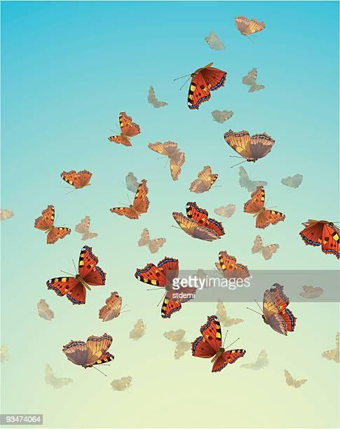 ilustrações, clipart, desenhos animados e ícones de borboletas - lepidóptero