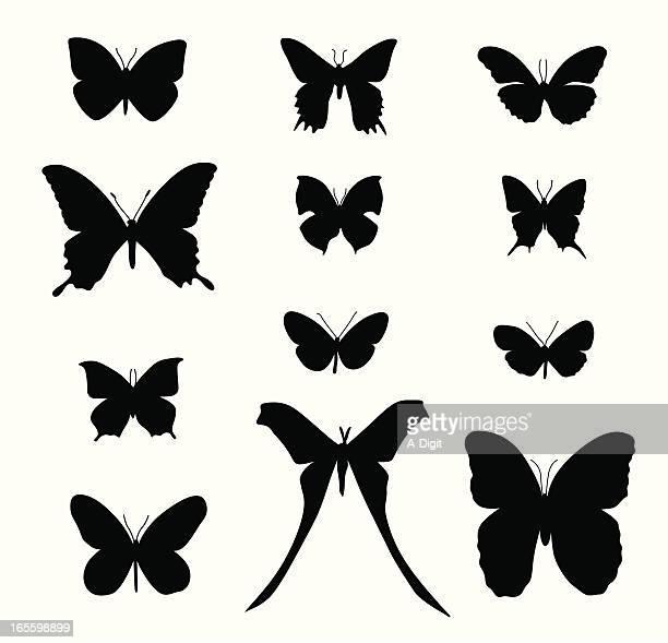 Butterflies Vector Silhouette