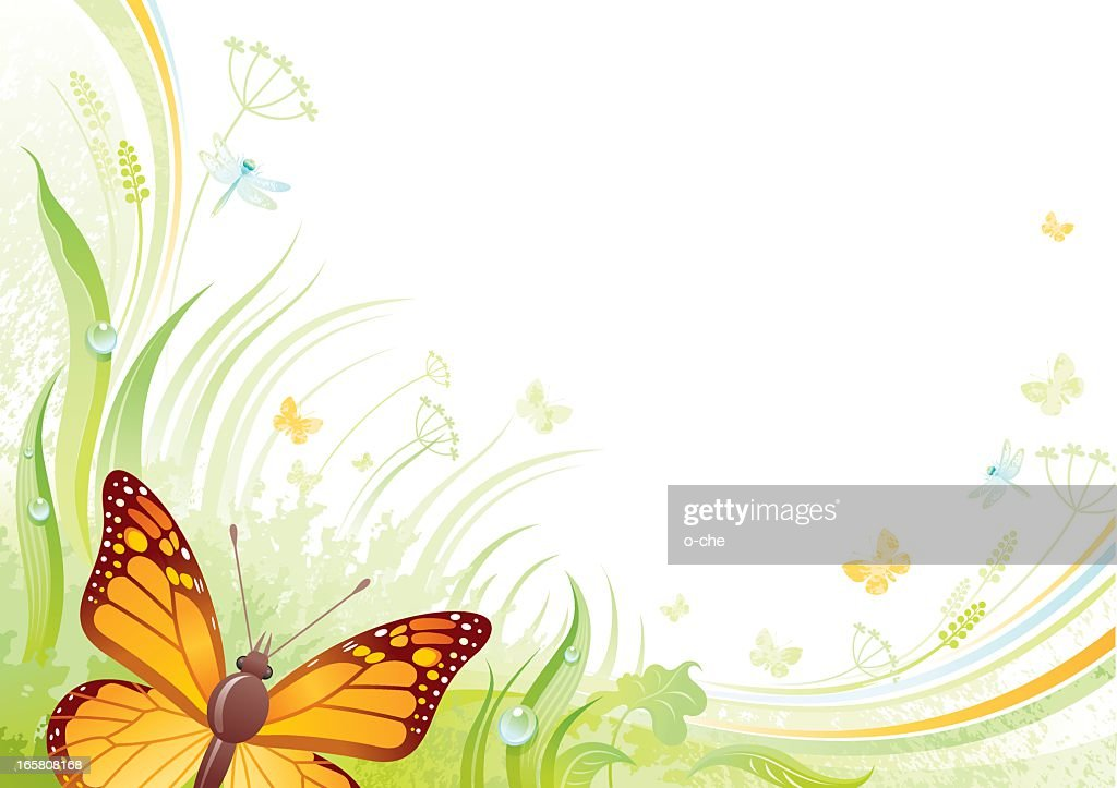 Butterfly background with copyspace