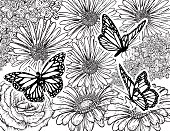 Butterfly Hand Drawn Adult Coloring Book Page