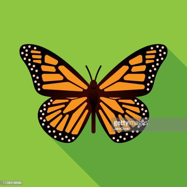 ilustraciones, imágenes clip art, dibujos animados e iconos de stock de icono de la mariposa plana - mariposa monarca