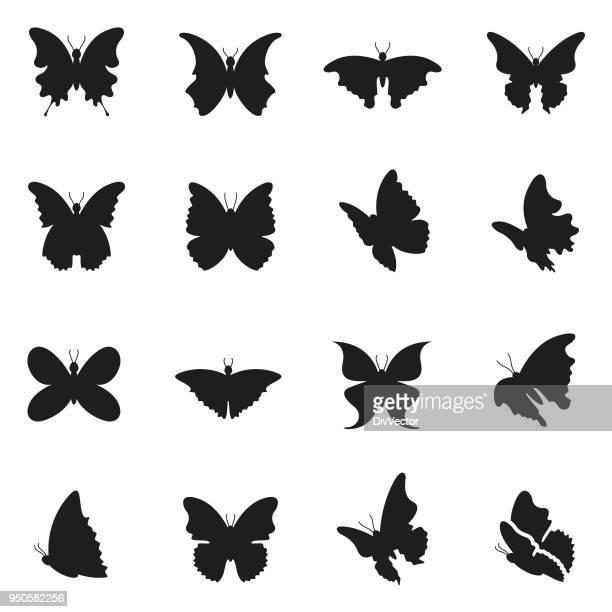 ilustrações, clipart, desenhos animados e ícones de ícone de borboleta conjunto - lepidóptero