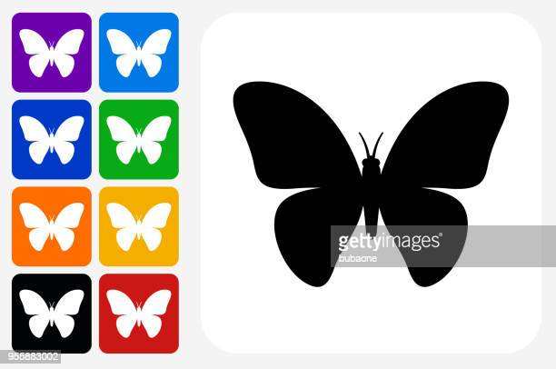 butterfly icon square button set - animal body part stock illustrations