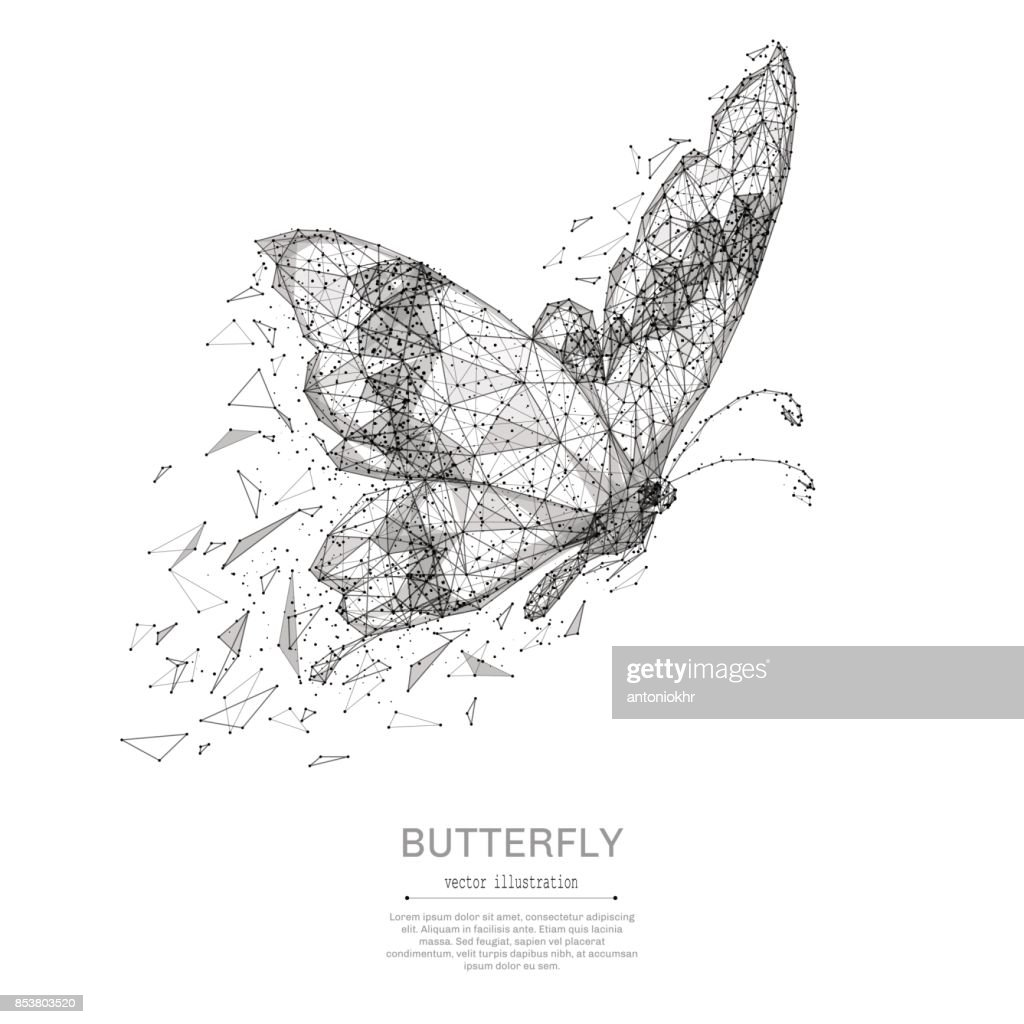 Butterfly low poly black