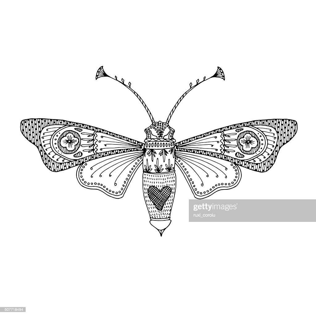 Butterfly moth black hand-drawn adult coloring book design